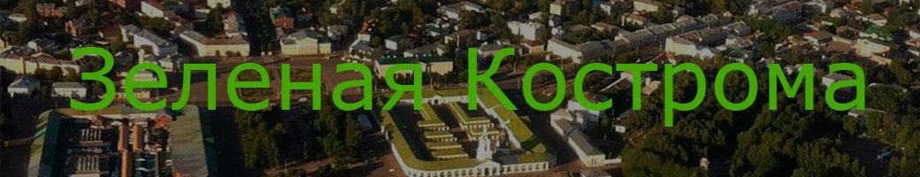 Зеленая Кострома