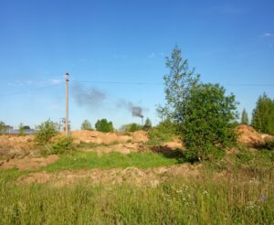 Отравившие Кострому углежоги вернулись к работе